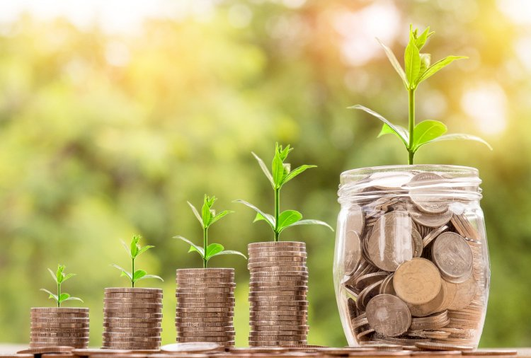 How To Accumulate Wealth With A Step by Step Plan Investing Money in Cash Paying Assets